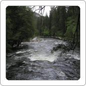 Wilderness River White Noise MP3